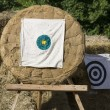Aim the center Port Washington. - September 15. Medieval Festiva — Stock Photo