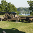 Cannon at Old Fort Niagara — Stock Photo