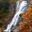 Finger lakes region waterfall in the autumn — Stock Photo #11299918