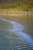 Alaska — Zdjęcie stockowe