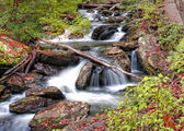 Forest waterfall in Helen Georgia — Stock Photo