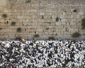 Blessing Cohen at the Western Wall in the Sukkot holiday in Jeru — Stock Photo
