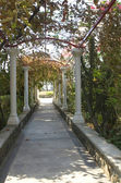 Pathway with columns — Stock Photo