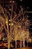 Christmas. Illuminated trees. — Stock Photo