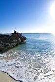 Pelícanos están sentados en las rocas — Foto de Stock