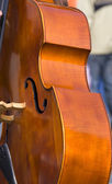 Contrabass — Stock Photo