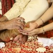 Indian wedding — Stock Photo #11300203