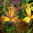 Art floral grunge graphic background - Foto Stock
