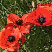 Sztuki kwiatowy kolorowe tło — Zdjęcie stockowe