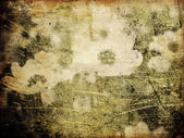 Art floral grunge vintage background — Stock Photo