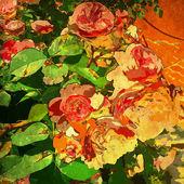 Art blommor vintage färgstarka bakgrund — Stockfoto