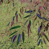 Arte folhas de cartão de plano de fundo da temporada — Foto Stock