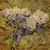 艺术 grunge 花卉复古背景 — 图库照片