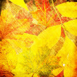 Art leaves autumn background card — Lizenzfreies Foto