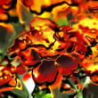 Art glass floral colorful background — Stock fotografie