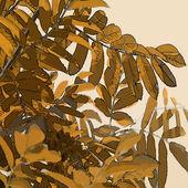 Art leaves autumn background card — Stock Photo