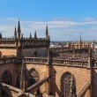 Cathedral La Giralda at Sevilla Spain — Stock Photo #10795662