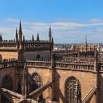 Cathedral La Giralda at Sevilla Spain — Stock Photo #10795662
