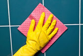 La main avec une éponge — Photo