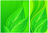 Leaves on green background — Stock Vector