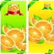 Oranges banner — Stock Vector