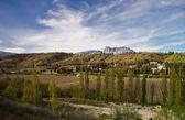 View of the mountain and vineyards Demerdzhi — Stock Photo