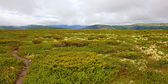 Rondane Norway — Stock Photo