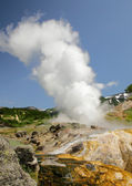 Erupting geysers — Stock Photo