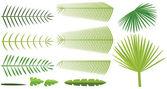 Palmiye yaprakları kümesi — Stok Vektör
