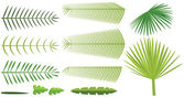 Set of palm leaves — Vector de stock