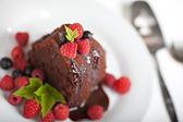 Lekkere chocolade biscuit — Stockfoto
