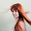 Beautiful woman with magnificent red hair — Stock Photo #11081855