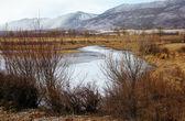 байкал зимой — Стоковое фото