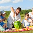 Family picnic — Stock Photo #11338752