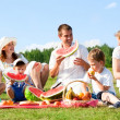 Family picnic — Stock Photo
