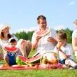 Family picnic — Stockfoto #11338753