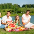 Family picnic — Stock Photo #11338775