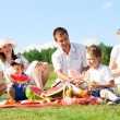 Family picnic — Stock Photo #11688964