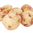 Potatoes isolated — Stock Photo #11146857