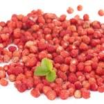 Delicious wild strawberries — Stock Photo #11284684