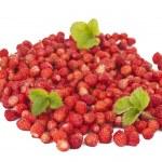 Delicious wild strawberries — Stock Photo #11284940