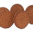 Chocolate biscuit - Stockfoto