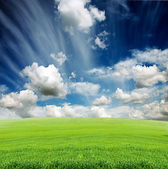 Cloudy sky with green grass meadow — Stock Photo