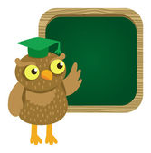 Vector cute owl with school board — Stock Vector
