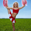 Beauty cheerleader — Stock Photo #11081478