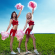 Royalty-Free Stock Photo: Two beauty cheerleader