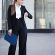 Business woman — Stock Photo #11191058