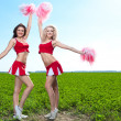 Cheerleader — Stock Photo #11415426
