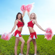 Cheerleader — Stock Photo #11462823