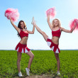 Cheerleader — Stock Photo #11462825